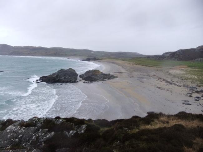 Grey seashore